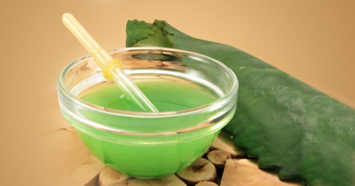 Как капать сок каланхоэ ребенку при насморке, с какого возраста можно использовать это средство?