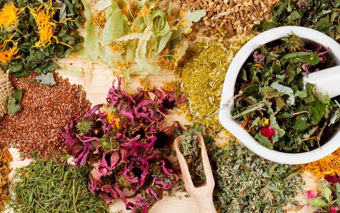 травы при желчекаменной болезни