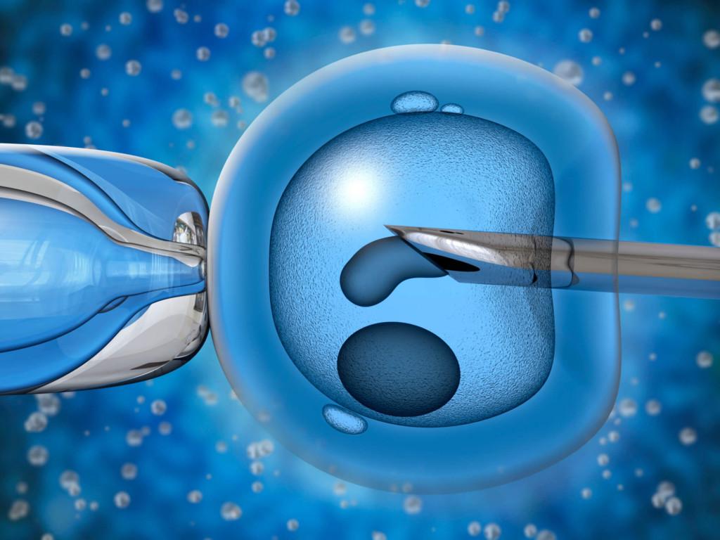 Для чего и каким образом проводят криоконсервацию эмбрионов и их подсадку, что дает этот метод при проведении ЭКО?