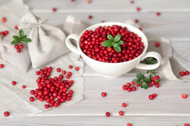 Брусника для беременных: можно ли употреблять ягоды, листья, брусничный морс и отвар на разных сроках беременности?