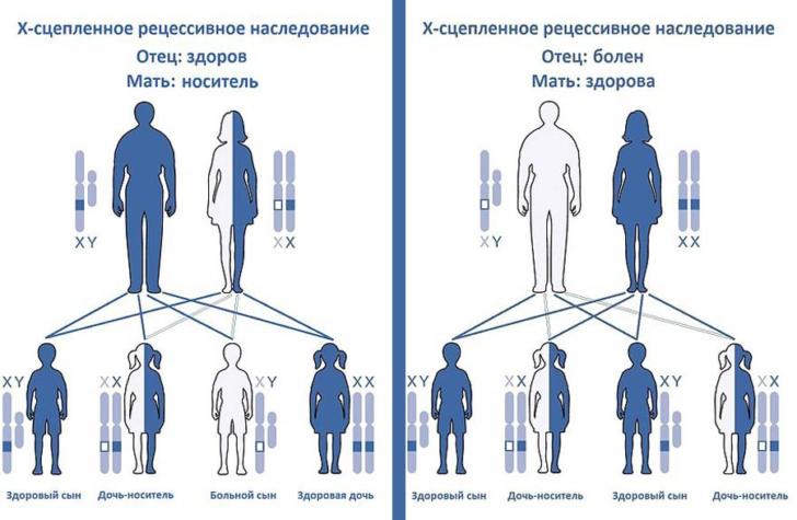 Важно знать о случаях заболевания среди ближайших родственников, чтобы заранее спрогнозировать риск заболевания у ребенка