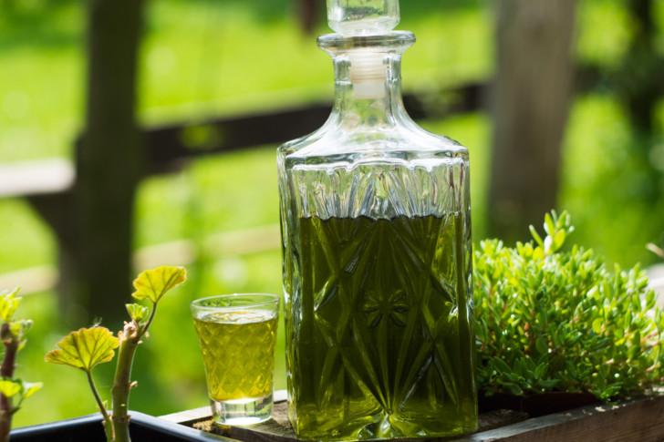 Как пить крапиву правильно при обильных месячных, для задержки и по другим показаниям?