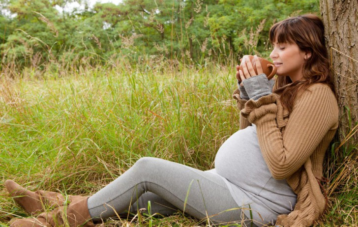 Боровая матка для ускорения зачатия: как принимать при планировании беременности и для чего пьют?