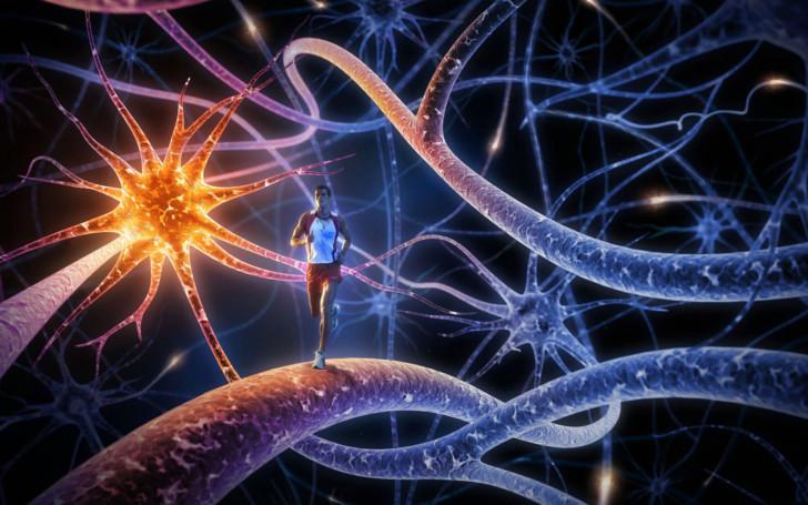 Эпилепсия и беременность: можно ли рожать в таком случае, опасно ли это, какие могут быть последствия?