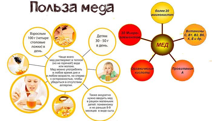 польза и свойства меда