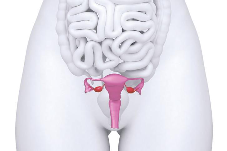 Опущение матки у женщин после родов: какие симптомы, как лечить, могут ли быть последствия?