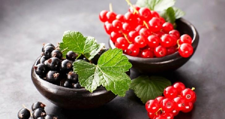 Можно ли употреблять ягоды и листья черной и красной смородины во время 1, 2 и 3 триместров беременности ?