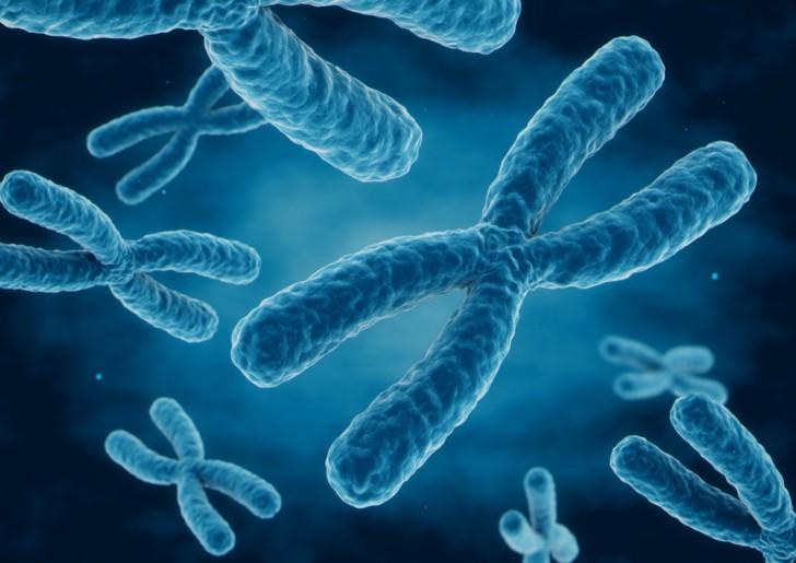 Симптомы синдрома Шерешевского-Тернера и диагностика, причины возникновения и тип наследования, лечение