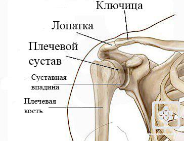 Лечение перелома ключицы